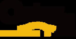 Century 21 Perth Logo